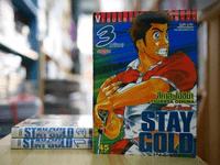 Stay Gold สเตย์ โกลด์ 3 เล่มจบ