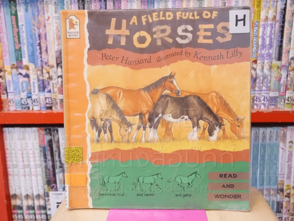 A Field Full of  Horses