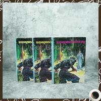 จอมยุทธ์เจ้าสำราญ 3 เล่มจบ - ว.ณ เมืองลุง