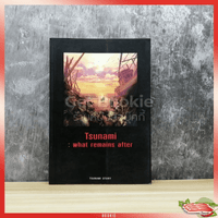 Tsunami: what remains after