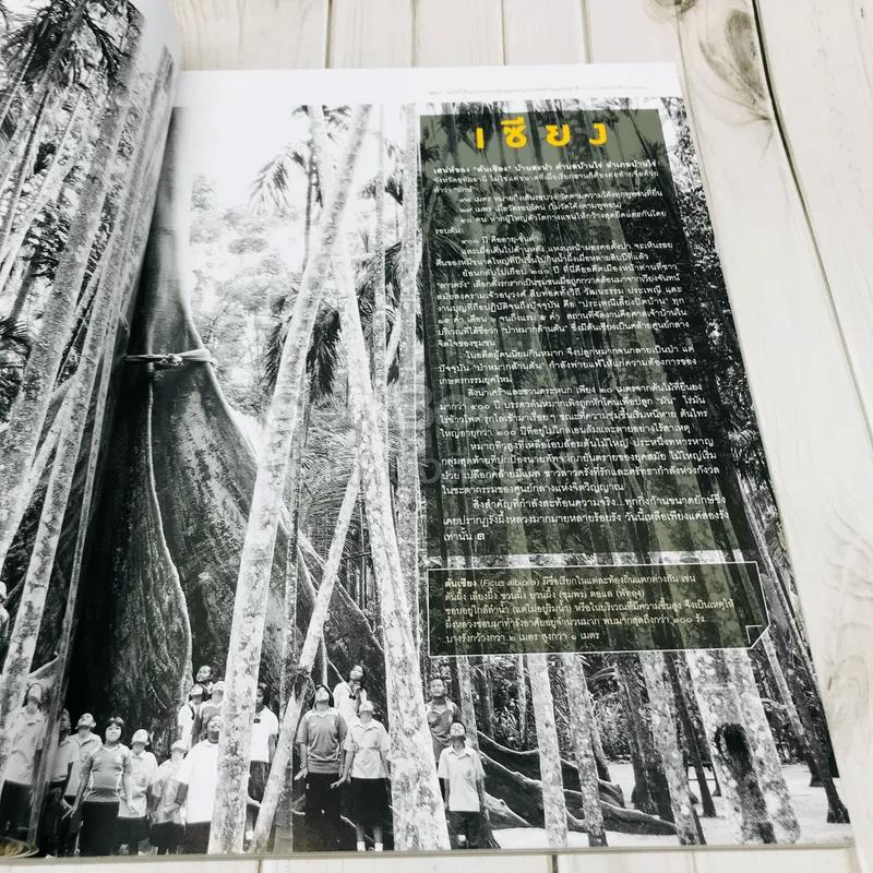 Feature Magazine สารคดี ฉบับที่ 373 ปีที่ 32 สิบเส้นทางสุดฮิป