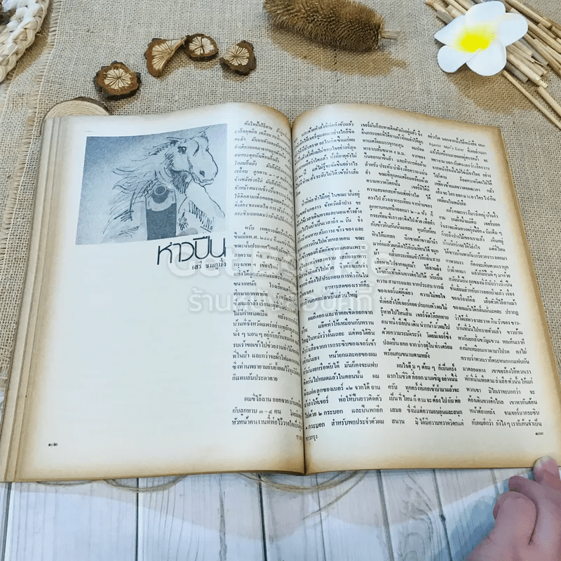 ชาวกรุง ปีที่ 29 ฉบับที่ 3 ธ.ค.2522
