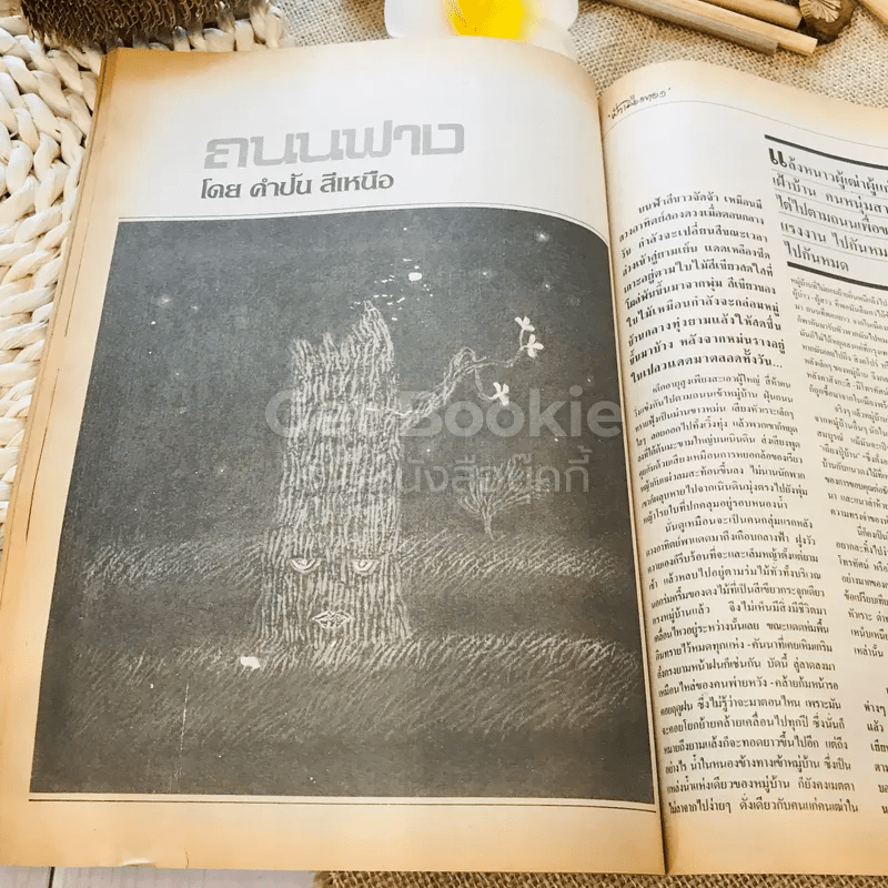ฟ้าเมืองทอง ฉบับที่ 95 ก.พ.2527