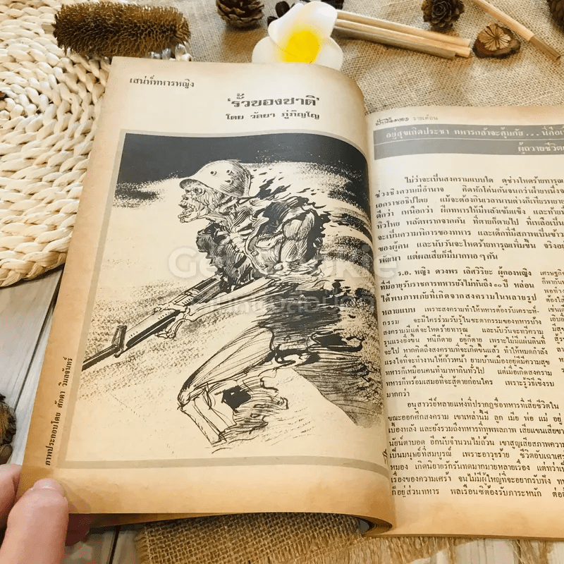 ฟ้าเมืองทอง ฉบับที่ 56 พ.ย.2523