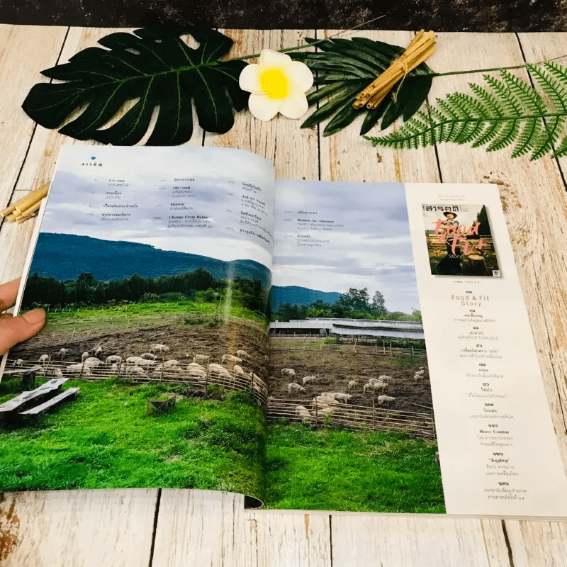 Feature Magazine สารคดี ฉบับที่ 405 พ.ย.2561