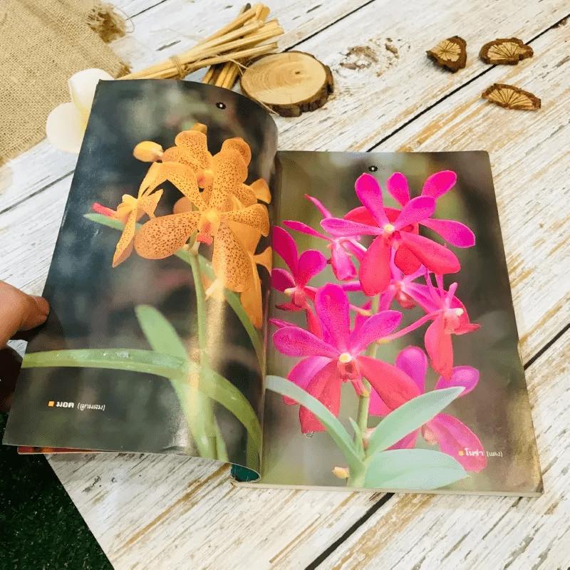 คู่มือเลี้ยงกล้วยไม้ Orchid