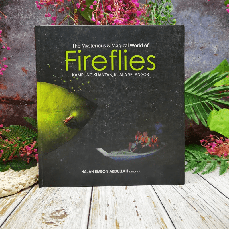 The Mysterious & Magical World of Firefiles