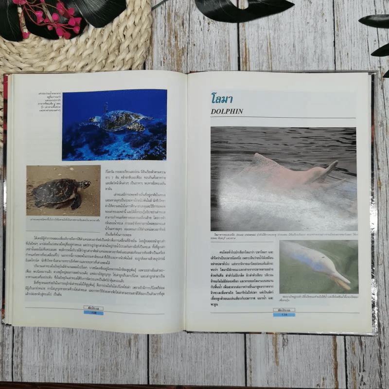 เรื่องน่ารู้เกี่ยวกับสัตว์ทะเล