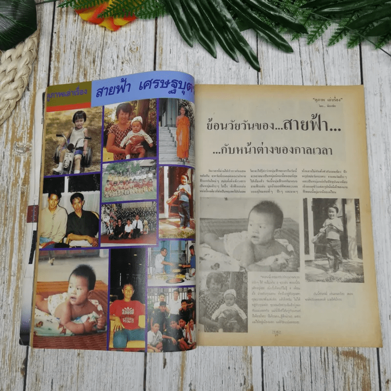 The Boy No.28 พีท ทองเจือ