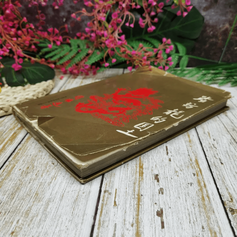 หนังสือบันทึกเหตุการณ์ไปเมืองจีนของสมเด็จพระเทพฯ ภาษาจีนทั้งเล่ม