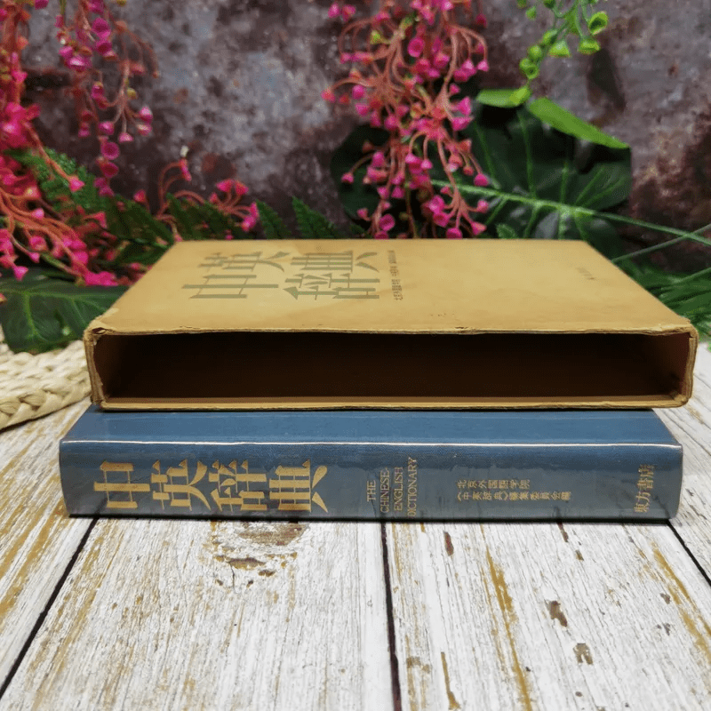 The Chinese-English Dictionary