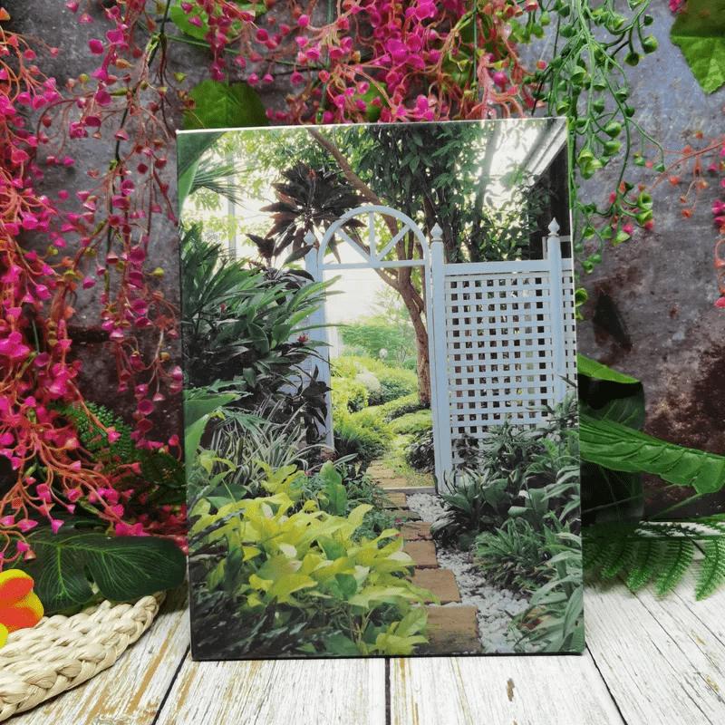 คู่มือการจัดและตกแต่งสวนในบ้าน