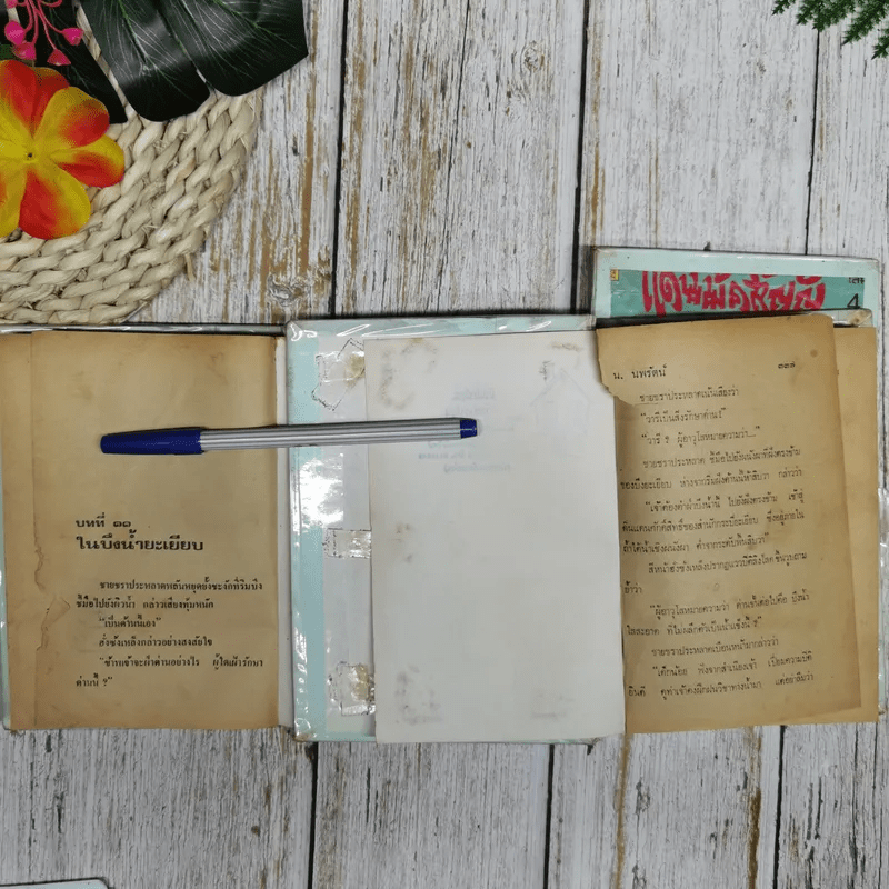แดนมิคสัญญี เล่ม 1-3 - น.นพรัตน์
