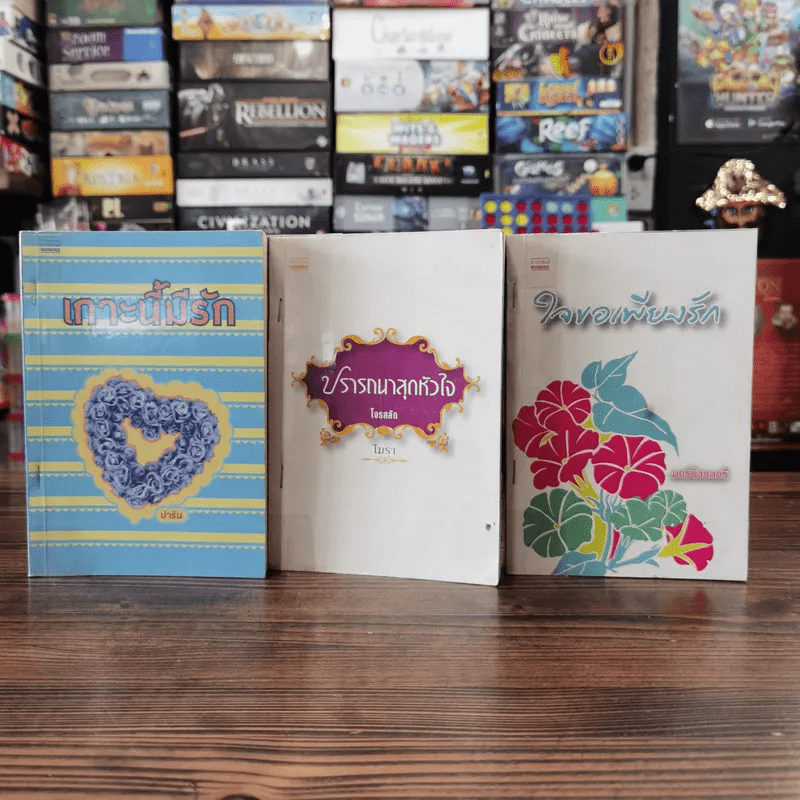 นิยายรัก 3 เล่ม 100 บาท ชุดที่ 1