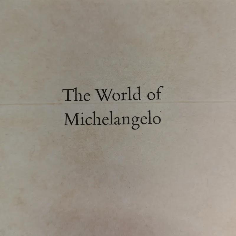 The World of Michelangelo