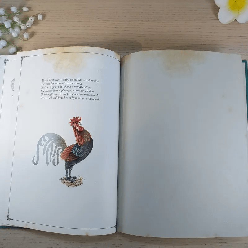 The Peacock Party - Alan Aldridge