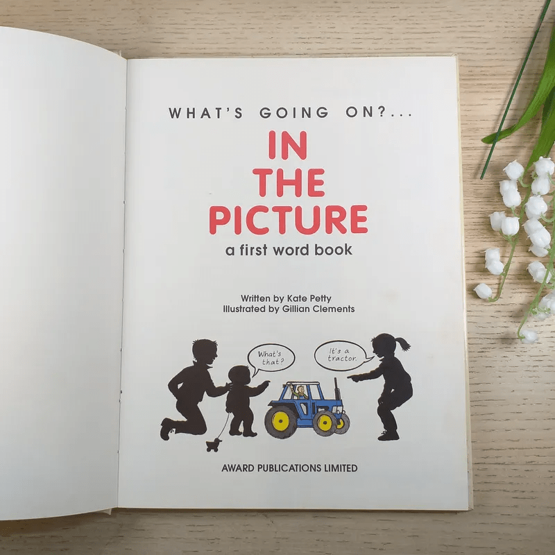 In the Picture a First Word Book